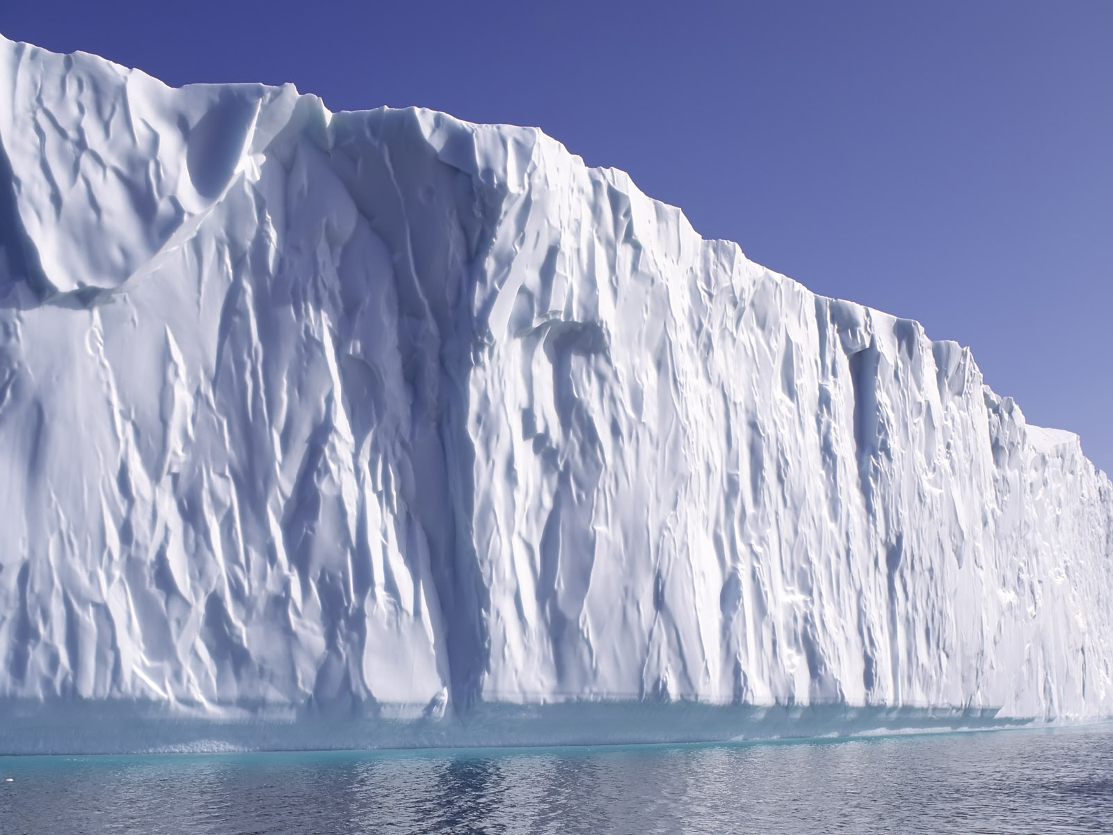 каротель относится высококачественные фото ледников цапли