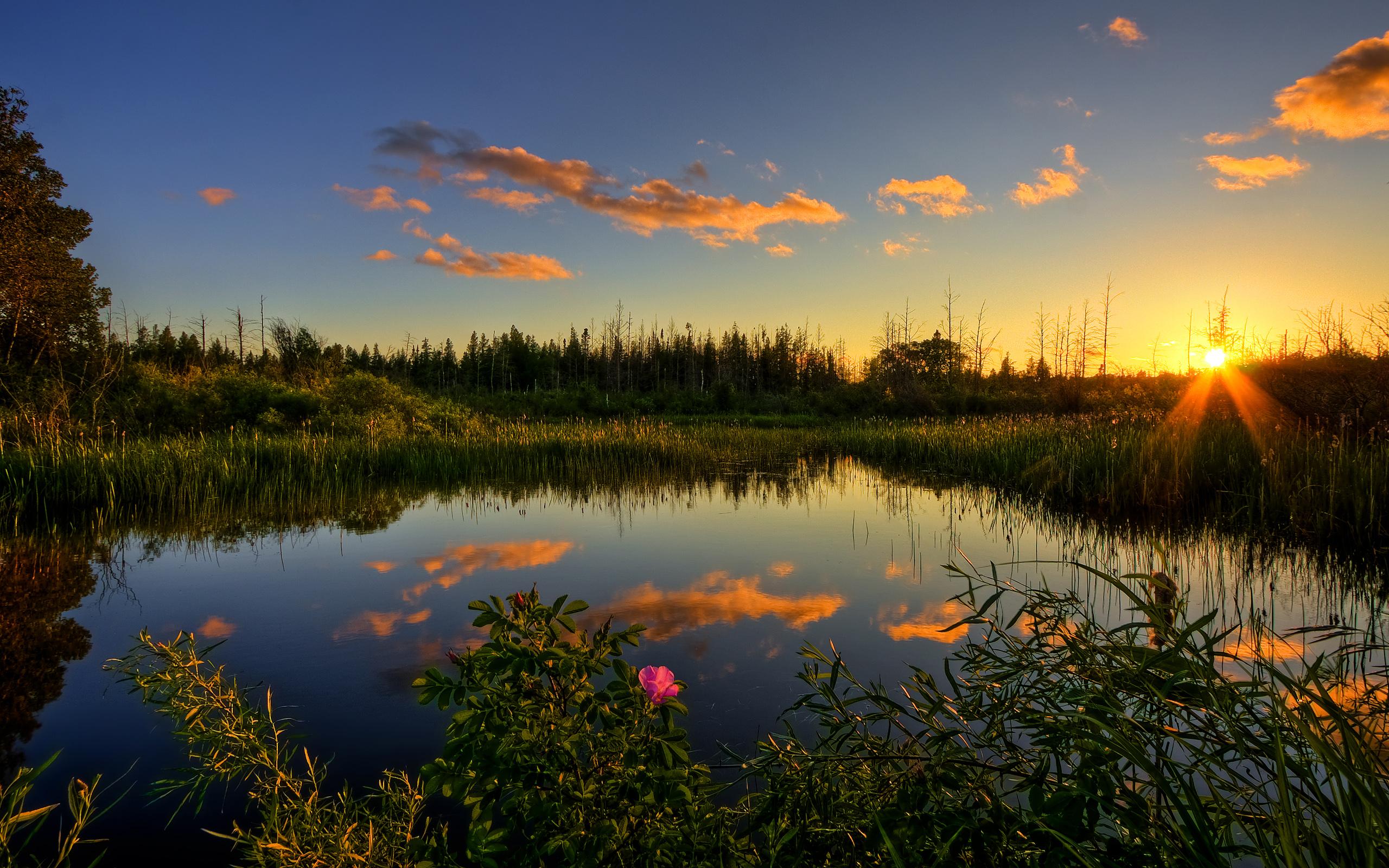 закат озеро небо трава  № 3878805  скачать